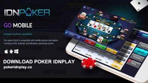 cara main idn poker